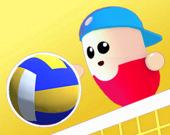 Волейбол бобов